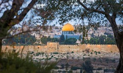 Old City Jerusalem view through the trees on Mount of Olives: Mount Zion, Jewish Quarter buildings and the Temple Mount with Dome of the Rock and the sealed Golden or Mercy Gate