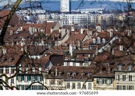Old City of Bern seen though some Branches