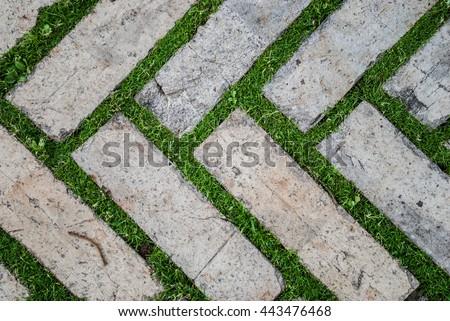Old Cobblestone Background With Grass / Brick With Grass / Tiles With Grass  / Stone Way