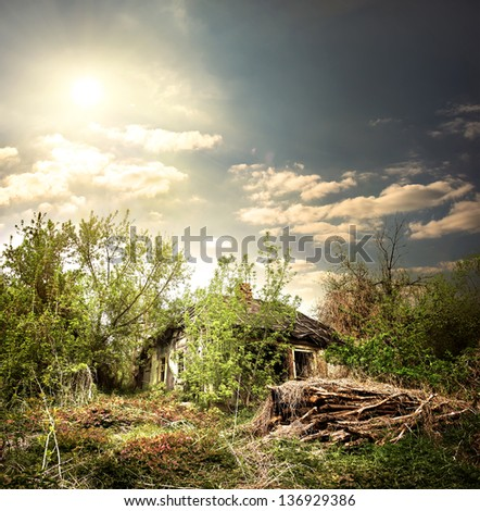Old collapsed house in the woods at evening