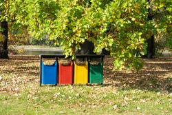 old Colorful Recycle Bins In The Park. urns for separate collection of garbage.