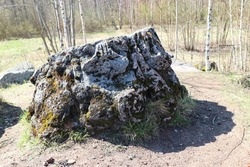 old column fragment from ruins of english palace in petergof russia