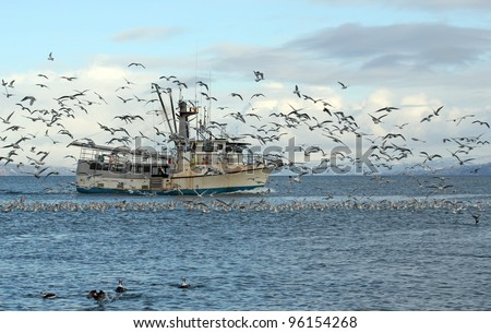 Old commercial fishing trawler heading out to sea in the Kachemak Bay near Homer, Alaska in winter surrounded by seagulls and shorebirds with snowy mountains in the background.
