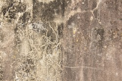 Old concrete wall texture with water infiltration