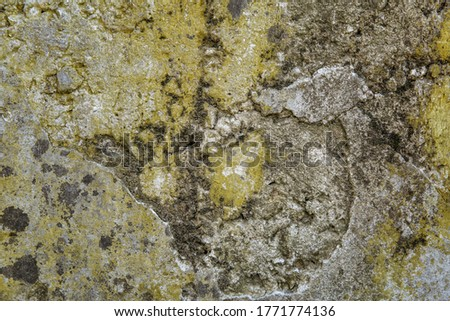 Old concrete wall with moss and destruction.