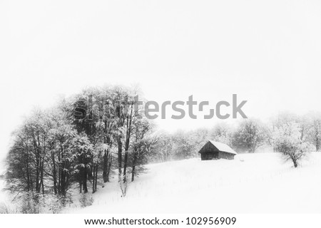 Old cottage in winter in the mountains and group of birch trees