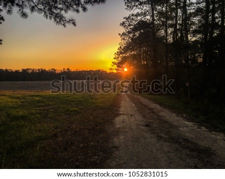 Old country road heading to the beautiful golden sunrise on a clear morning in North Carolina. Wake County. #1052831015