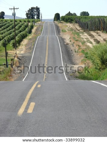 Old country road through wine country vineyard