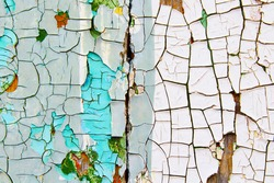 Old cracked paint on wooden boards. Painted wood. Planking. Close-up. Vertical view. Background. Texture.