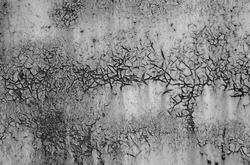 Old cracked painted textured black and white background.
