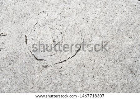 Old cracked plaster with circular cracks - grunge texture for background #1467718307