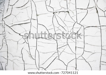 Old Cracked White Paint. Texture for background