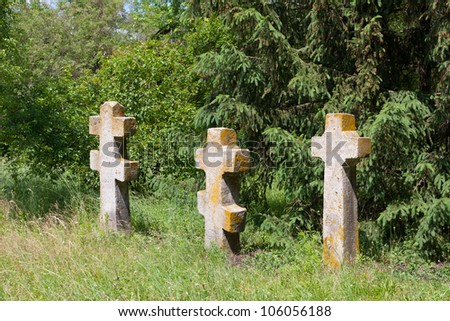 Old crosses on cemetery in forest