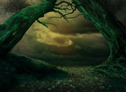 Old curvy tilted trees framing dramatic stormy cloudy sky. Also crooked leafless branches and roots. Scary halloween background