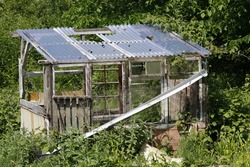 Old derelict shed in an overgrown allotment plot