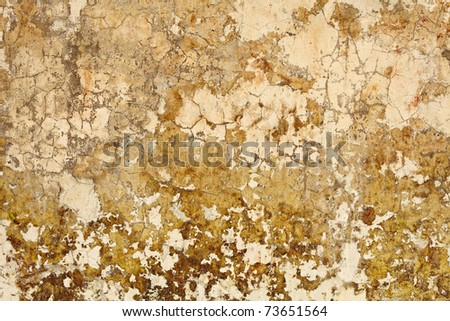 Old dirty nasty plaster on the wall surface