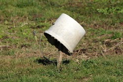 Old dirty white cracked broken plastic bucket with hole on side and metal handle left on top of short wooden stake in local urban home garden surrounded with grass and garden plants
