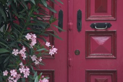 Old door. Authentic house and pink door. Pink flowers. Entrance to the house. Wallpaper. Vintage and retro. Cultural texture.