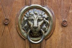 Old door knocker with bronze lion head on wooden door