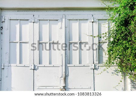Old doorway and lush green plant.  #1083813326