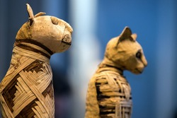 old egyptian mummy cat close up detail