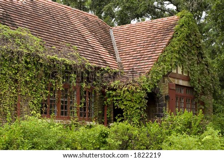 Stock photo old elegant home overgrown with weeds and ivy on the house great shot for a landscape company or 1822219