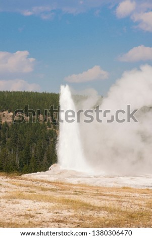 old faithful Geyser in old faithful Basin in Yellowstone National Park in Wyoming #1380306470