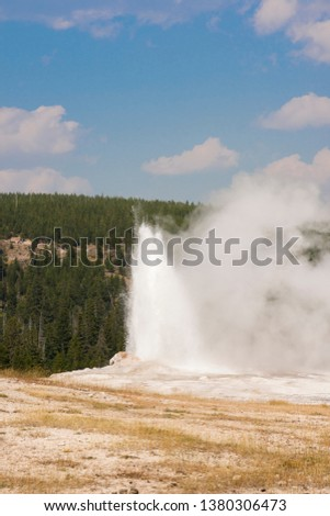 old faithful Geyser in old faithful Basin in Yellowstone National Park in Wyoming #1380306473