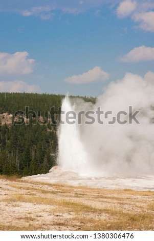 old faithful Geyser in old faithful Basin in Yellowstone National Park in Wyoming #1380306476