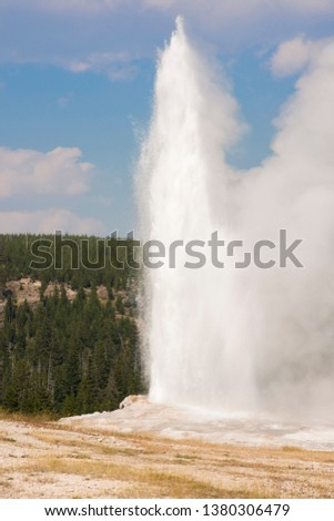 old faithful Geyser in old faithful Basin in Yellowstone National Park in Wyoming #1380306479