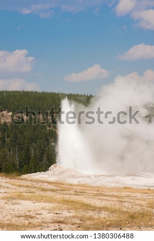 old faithful Geyser in old faithful Basin in Yellowstone National Park in Wyoming #1380306488