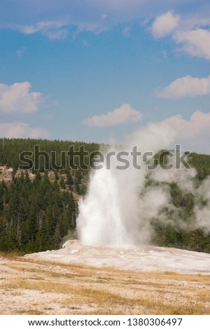 old faithful Geyser in old faithful Basin in Yellowstone National Park in Wyoming #1380306497