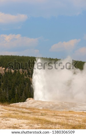 old faithful Geyser in old faithful Basin in Yellowstone National Park in Wyoming #1380306509