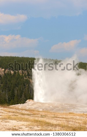 old faithful Geyser in old faithful Basin in Yellowstone National Park in Wyoming #1380306512