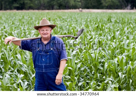 Old farmer standing in his corn fields