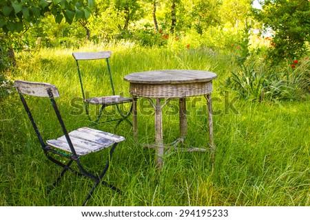 Old Fashioned Garden in Summer