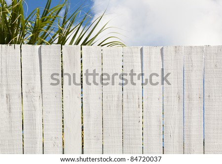 Old fashioned whitewashed board fence ready for your message or graffiti. Good background with leaves, and sky above fence. #84720037