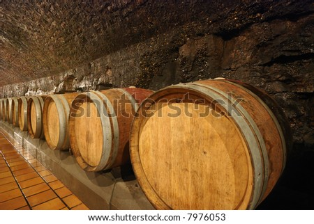 Old fashioned wooden wine barrels in a cave