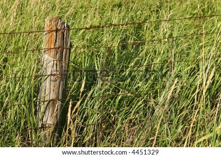 Old fence post and wire fence in grass field