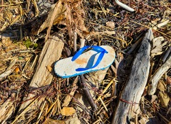 Old flipflop washed up on a beach amongst seaweed and debris.
