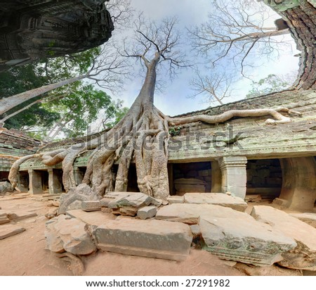 http://image.shutterstock.com/display_pic_with_logo/249301/249301,1237934831,1/stock-photo-old-giant-trees-in-angkor-wat-complex-27291982.jpg