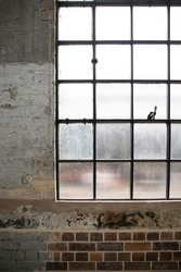 Old glass windows in industrial building