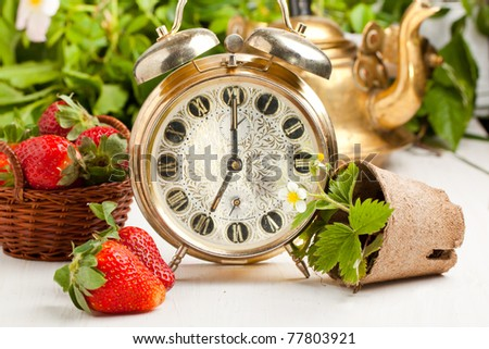 Old golden alarm-clock, old teapot and fresh strawberries on white table