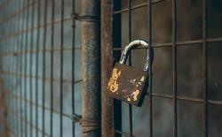 Old Golden padlock on old gate