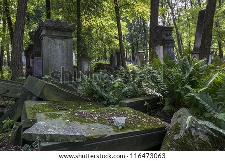 Old graves at historic Jewish cemetery, Okopowa Street in Warsaw, Poland