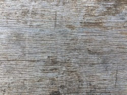 Old gray wood texture