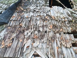old grayish wood, moss and decay, like a dilapidated textured wooden background of a rotten roof