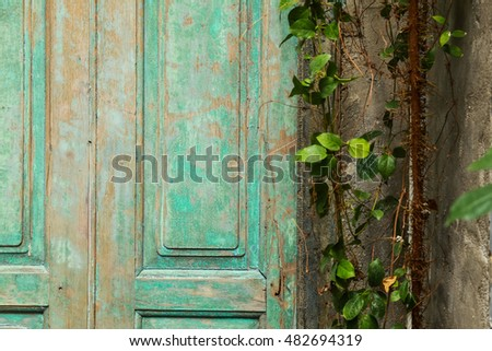 old green wood door and a wall...