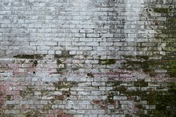 Old, Grimey Brick Texture with Moss at Alcatraz Island