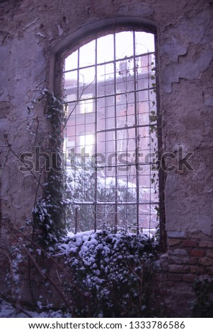 Old, grunge, vintage and gritty window frame, with wire instead of glass, on the cracked, textured, brick wall, during the winter sunset light. Some snow covers creeper plant and purple light comes in #1333786586